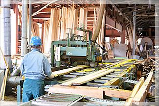 製材加工場